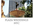 Plaza Weddings NYC