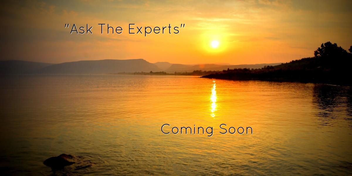 The Experts are Coming!! The Experts are Coming!!